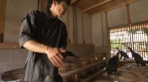 Man Prepares Birds For Traditional Cormorant Fishing In Japan