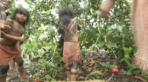 Indigenous People In Amazon Forest,Bullet Ant Ritual,children picking leaves
