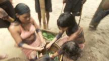 Indigenous People In Amazon Forest,Bullet Ant Ritual,breaking up leaves in water