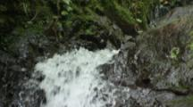Waterfall In Forest,Follow Water Down