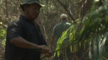 Men Harvest Plants In Forest To Build Structure In River