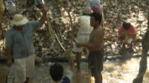Villagers Use Traditional Methods To Fish,beat plant roots to release toxin