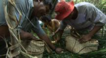 Villagers Use Traditional Methods To Fish,Including Poison