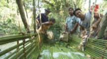 Villagers Use Traditional Methods,fish weir,to catch fish