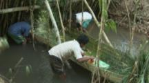 Villagers Use Traditional Methods To Fish,looking down on weir