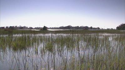 Panorama Okavango Delta
