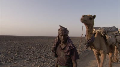 Danakil Cameleer Leads Camels Carrying Salt from Mines