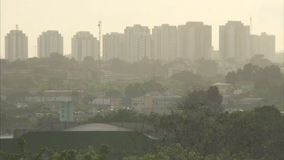 View of City Skyline Beyond Trees, Smoggy Air