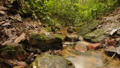 Time Lapse Stream & River Stock Footage