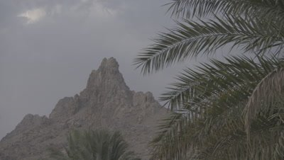 Jagged Desert Mountain And Date Plantation