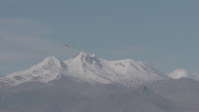Greater Flamingos Flying, Mt Erciyes in Background