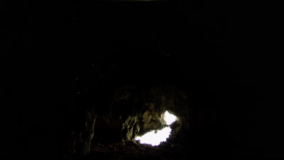 Daylight floods the far side of a dark limestone cave; Fruit bats fly in foreground