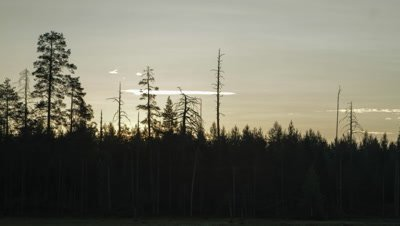 Timelapse of clouds moving over forest with water in foreground during a sunrise