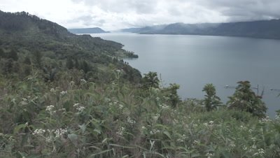 Scenic view of Lake Toba, covered by a cloudy sky, close up on vegetation in the foreground