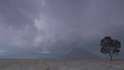 Scenic view of the volcanoes in Tengger Caldera, surrounded by Sand Sea and a lone tree; heavy clouds in sky