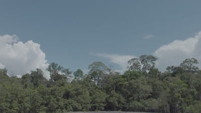 Time lapse of rainclouds building in the sky over a Mud Volcano in the middle of a rainforest