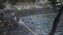 Pilot Whales Are Herded Into Nets In Killing Cove