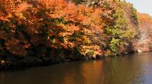 Trees With Fall Colors Reflect On Ct River