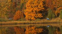 Fall Colors And Reflection On River Boats In Grass