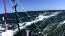 Sailing Down Wind Single Handed Fast Looking Aft