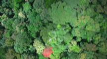 Aerial Over Lamington National Park, Looking Down On Dense Forest