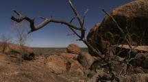 The Granites - Boulders + Dead Trees