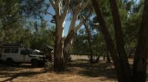 Camping At Moonie River, Nindigully