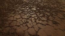 Shrinking Watering Hole In Dry, Cracked Earth