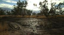 Muddy Outback Landscape After Rain