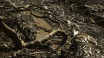 Muddy Outback Landscape After Rain