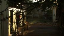 Galah Cockatoos Feed In Someone's Yard