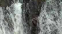 Zoom Out From Waterfall In Australian Rainforest