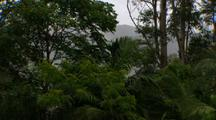 Misty Mountains On Wet Day In Rainforest