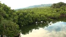 Aerial, Over Mangroves, Los Haitises, Dominican Republic