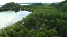 Aerial, Over Mangrove Coast, Los Haitises, Dominican Republic