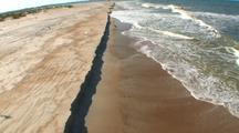 Aerial, Into Flock Of Seabirds Along Beach/Surf