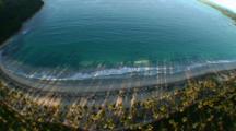 Coconut Trees Cast Long Shadows Over Beach And Ocean