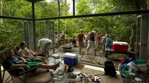 A Group Of Friends In A Glass House Deep In The Jungles Of Malaysia.