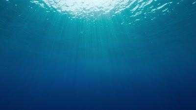 Underwater sunlit scene