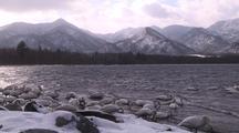Whooper Swans Adults Feed Near Geothermal/Onsen On Lake Algae Japan 008