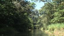 Costa Rica Rainforest Canoeing Backchannel