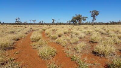 Outback Australia Landscape Red Desert Sand and Dry Arid Grasslands