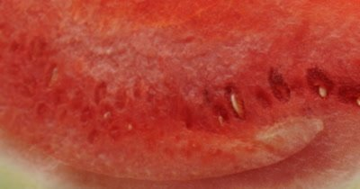 Watermelon health fresh natural fruit