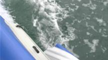 Great White Shark Attack Inflatable Boat