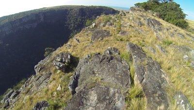 Oribi George Transkei Coast ,Sardine Run