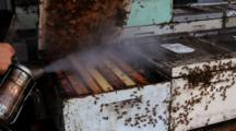 Beekeeper Working With Bee Hives Smoking Bees