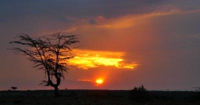 Africa Scenic