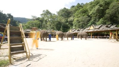 Wide angle elephant school display Wide angletched by tourists with elephants performing tasks in purpose built yard Xishuangbanna China