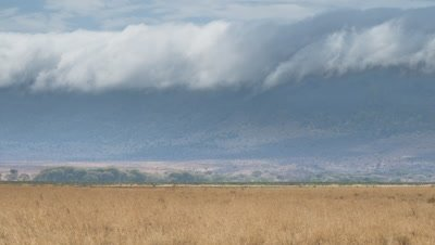Medium wide angle dramatic rolling cloud over crater wall with distant wildebeest