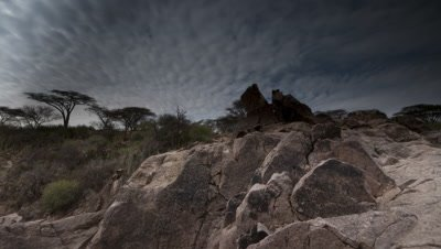 Medium wide angle pan from rocks to look up and along tree lined Olduvei Gorge with mackerel sky cloud rolling overhead